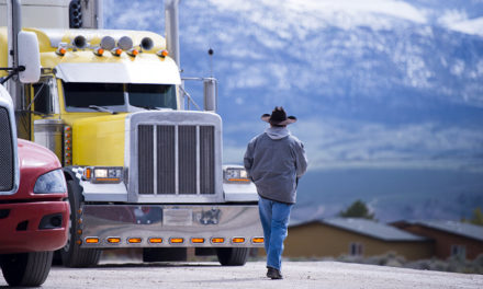From Owner-Operator to Fleet Owner: How to Make a Smooth Transition