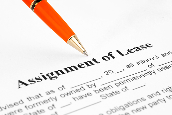 Reading the Fine Print – Understanding Your Lease